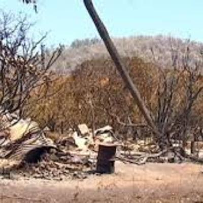 Bushfires Lit By Teenager, What Should Be Done Now?