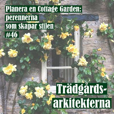 Planera en Cottage Garden: perennerna som skapar stilen