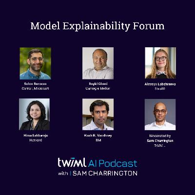 Model Explainability Forum - #401