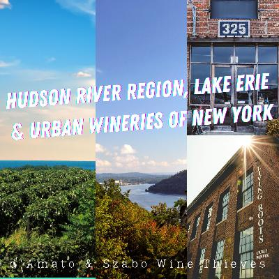 Hudson River Region, Lake Erie and the Urban Wineries of New York