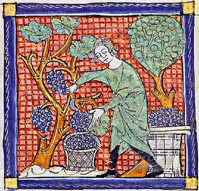 43 – The Medieval Transformation Part 5: Medicine and Mythology