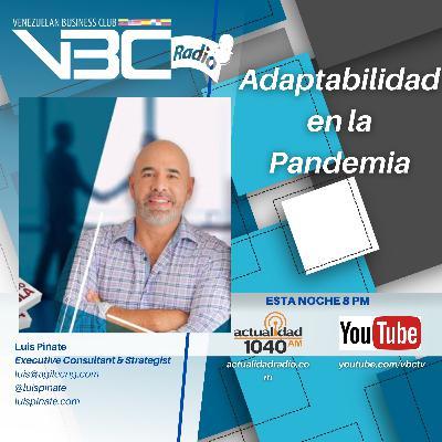 Adaptabilidad en los negocios durante la pandemia - Luis Piñate