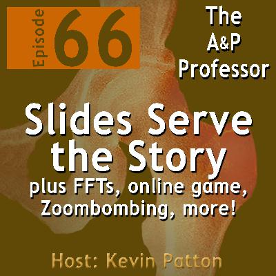 Slides Serve the Story of Anatomy & Physiology | Episode 66