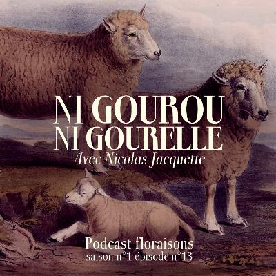 Ni gourou ni gourelle (avec Nicolas Jacquette)