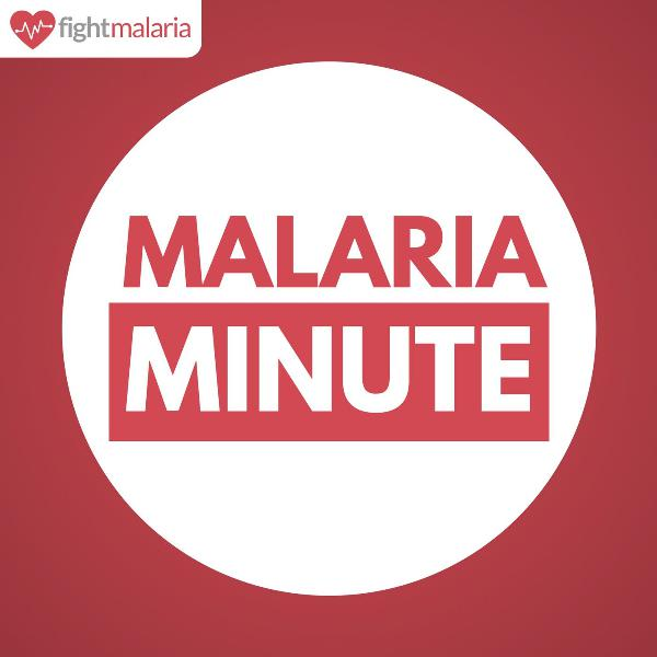 Getting the Malaria Response 'Back on Track'