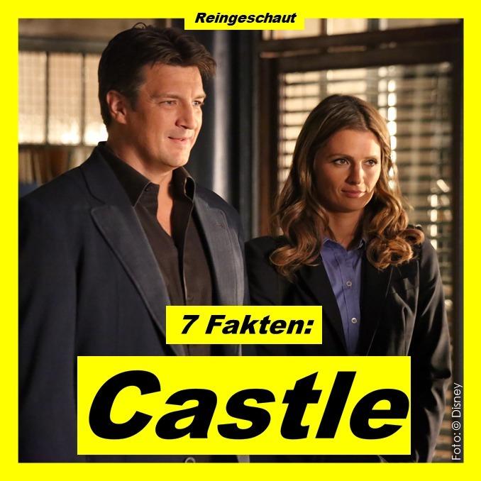 7 Fakten: Castle