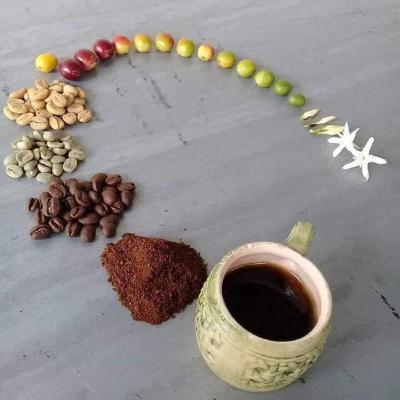 اپیزود یکم - آشنایی ابتدایی با قهوه و معرفی روشهای دمآوری