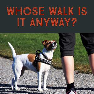 Whose Walk Is It Anyway?