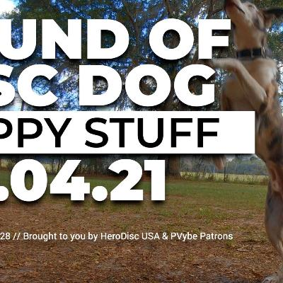 The Sound of Disc Dog | Puppy Stuff