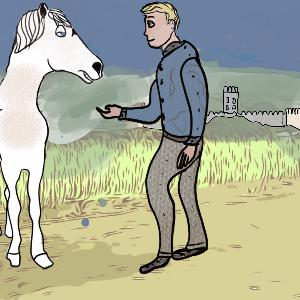 The Magician's Horse