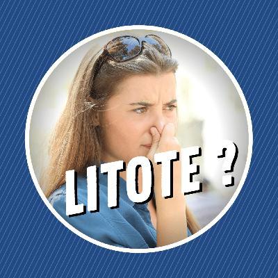 Qu'est-ce qu'une litote ?