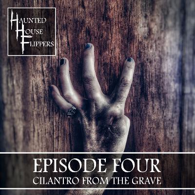 4 - Cilantro From The Grave