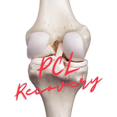 Posterior Cruciate Ligament AKA the PCL