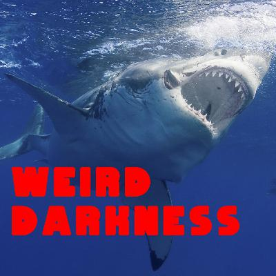 """""""THE REAL SHARK ATTACKS BEHIND 'JAWS'"""" and More True SHARK Stories! #WeirdDarkness"""