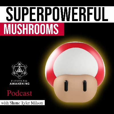 EA Ep. 44 - Uncovering the Superpower of Mushrooms