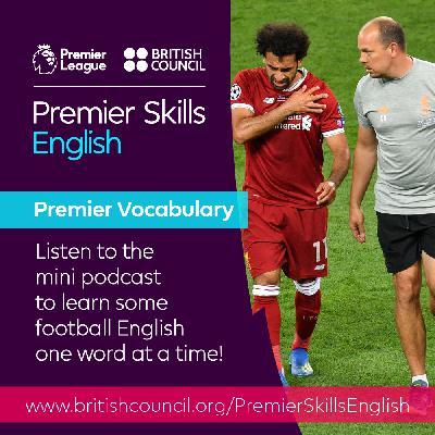 Premier Vocabulary - Medium - Long-term injury