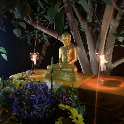 GUIDED MEDITATION: 'Buddho' - Recollection of the Buddha