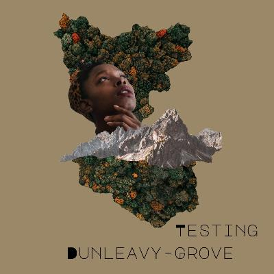 [Episode 8] Testing Dunleavy-Grove