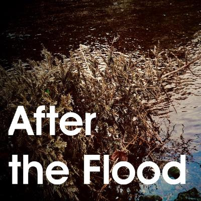 Episode 7 - After the Flood
