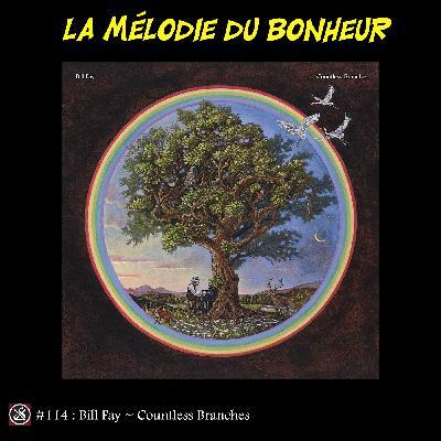 LMDB #114 : Countless Branches, Bill Fay, Fay, Fay, ce qui lui plaît, plaît, plaît