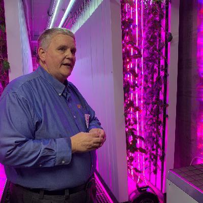 AgCast: Fresh Electric Farm
