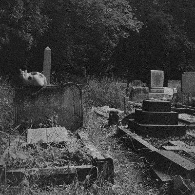Los relatos más aterradores en cementerios
