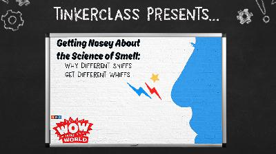 Tinkerclass (Week 4 Day 1): Getting Nosey About the Science of Smell