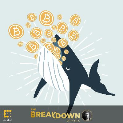 BREAKDOWN: Who Matters More to Bitcoin – Whales or Plebs?