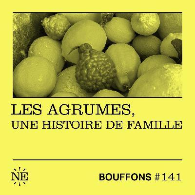 #141 - Les agrumes, une histoire de famille