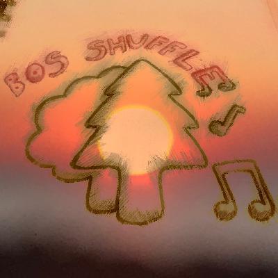 Bos Shuffle #1